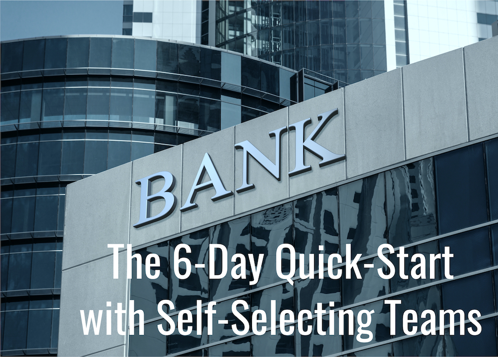 Large Australian Bank